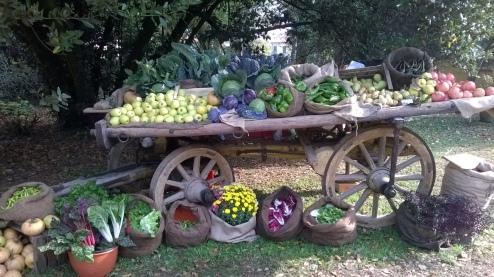 carro con frutta paolo