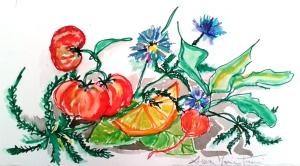 Pomodori Ravanelli Arancia e cicoria